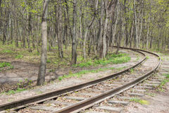 Railroad at the forest Stock Photo