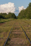 The railroad goes into the distance in the woods Stock Photos