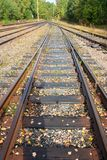 Railroad going to the perspective of sunny days.  royalty free stock photo