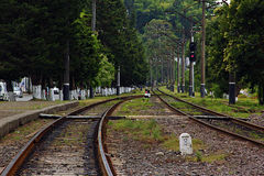 Railroad Green Path. Railroad lying on a green path Royalty Free Stock Photos