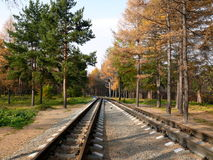 Railroad for kids in Chelyabinsk park Stock Photography