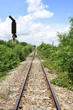 Railroad nature. Rail corridor to beauty of nature stock image
