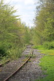 Railroad. Nature summer day denmark Royalty Free Stock Photo