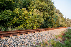 Railroad next to the forrest Stock Image
