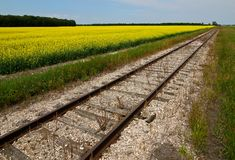 Railroad perspective royalty free stock images