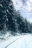 Railroad in snow forest Stock Photos