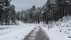 Railroad Springs Road in Winter Stock Image