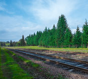 Railroad summer day with green grass and trees Royalty Free Stock Photography