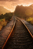 Railroad in sunset. The railroad to a forest in sunset Stock Images