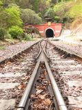 Railroad with switch blade and tunnel Stock Photos
