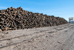 Free Railroad Ties Royalty Free Stock Images - 63656739