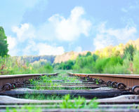 Railroad to horizon under deep blue sky in sunset Royalty Free Stock Photography