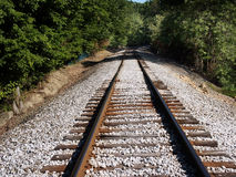 Railroad track. In the woods royalty free stock photos