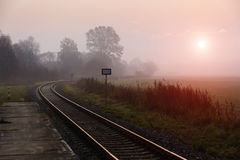 Railroad track during autumn foggy morning Royalty Free Stock Photo