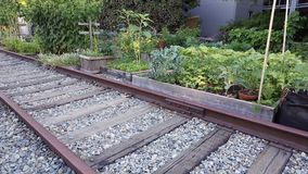 Railroad Track Community Garden Royalty Free Stock Image