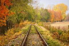 Railroad track curve around the bend and out of sight through tr Stock Photo