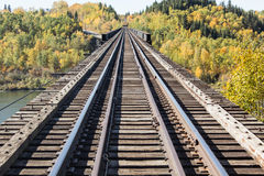 Railroad. Track with fall colored trees Royalty Free Stock Photography