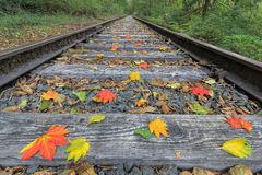 Railroad Track with Fall Foliage Royalty Free Stock Photos