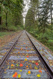 Railroad Track with Fall Foliage Vertical Royalty Free Stock Photo