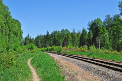 Railroad track in forest Stock Photos