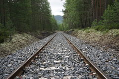 Railroad track through a forest in Norway. With the sky in the background Royalty Free Stock Photos