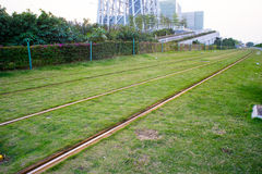 Railroad track with grass Stock Image