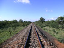 Railroad track to the horizon in Swaziland Royalty Free Stock Photos