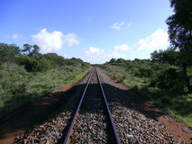 Railroad track to the horizon in Swaziland Royalty Free Stock Photography