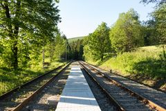 Railroad track winding through green summer forest.  Royalty Free Stock Photo