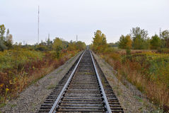 Railroad Tracks. A single straight railway line royalty free stock images
