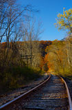 Railroad Tracks. In a rural forest Royalty Free Stock Photos