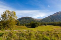 Railroad tracks along green trees, mountain and blue sky in Punt. Railroad tracks along green trees, mountain and blue sky, Autumn view in Punt Muragl Royalty Free Stock Photography
