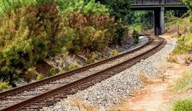 Railroad Tracks Amidst Trees Royalty Free Stock Photo