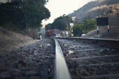 Railroad Tracks Amidst Trees Against Sky Royalty Free Stock Photos