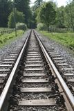 Railroad Tracks Amidst Trees in Forest Royalty Free Stock Photography