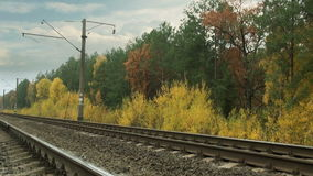 Railroad tracks and autumn forest Stock Images