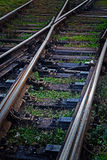 Railroad tracks in black background with grass Stock Photography