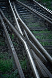 Railroad tracks in black background with grass Stock Photo