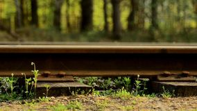 Railroad tracks. Close-up of the rails. Railroad tracks. Close-up of the rails stock video