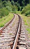 Railroad tracks in the country Royalty Free Stock Image
