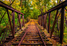 Railroad tracks covered in autumn leaves, near Stewartstown, Pen Stock Photos