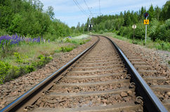 Railroad tracks curve Royalty Free Stock Images