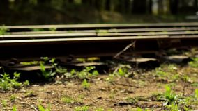 Railroad tracks. Depot wagons. Old rails. Railroad tracks. Depot wagons Old rails stock video