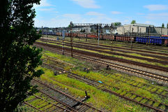 Railroad tracks and empty the wagons laden with cargo Royalty Free Stock Photography