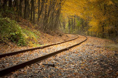 Railroad Tracks in the Fall. Landscape shot of Railroad tracks in the fall royalty free stock photography