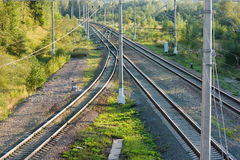 Railroad tracks in forest horizontal view Stock Photos