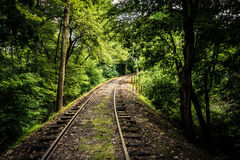 Railroad tracks through a forest in York County, Pennsylvania. Stock Image