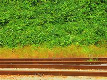 Railroad Tracks in Georgia Royalty Free Stock Images