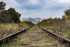 Railroad tracks leading to the horizon Stock Images