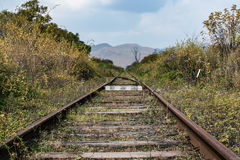Railroad tracks leading to the horizon Stock Photo